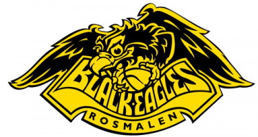 Basketbalvereniging The Black Eagles