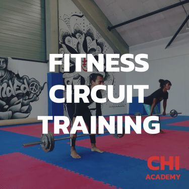 Fitness Circuit Training / Fitness Small Group